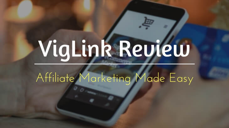 VigLink Review