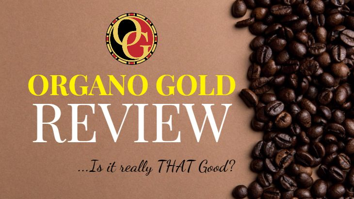 is organo gold a scam