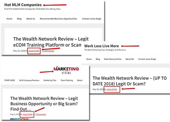 jesse singh the wealth network review