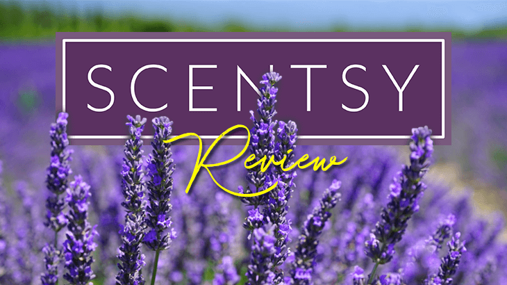 is scentsy a scam