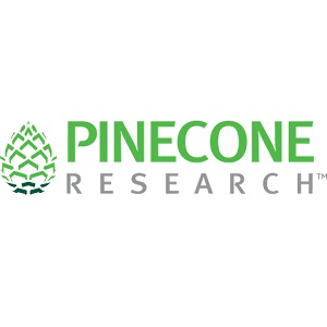 Pinecone Research Review Image Summary