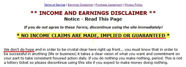 Online Success Plan Earnings Disclaimer
