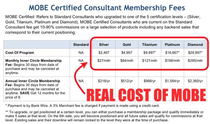 My Online Success Plan MOBE Membership Levels