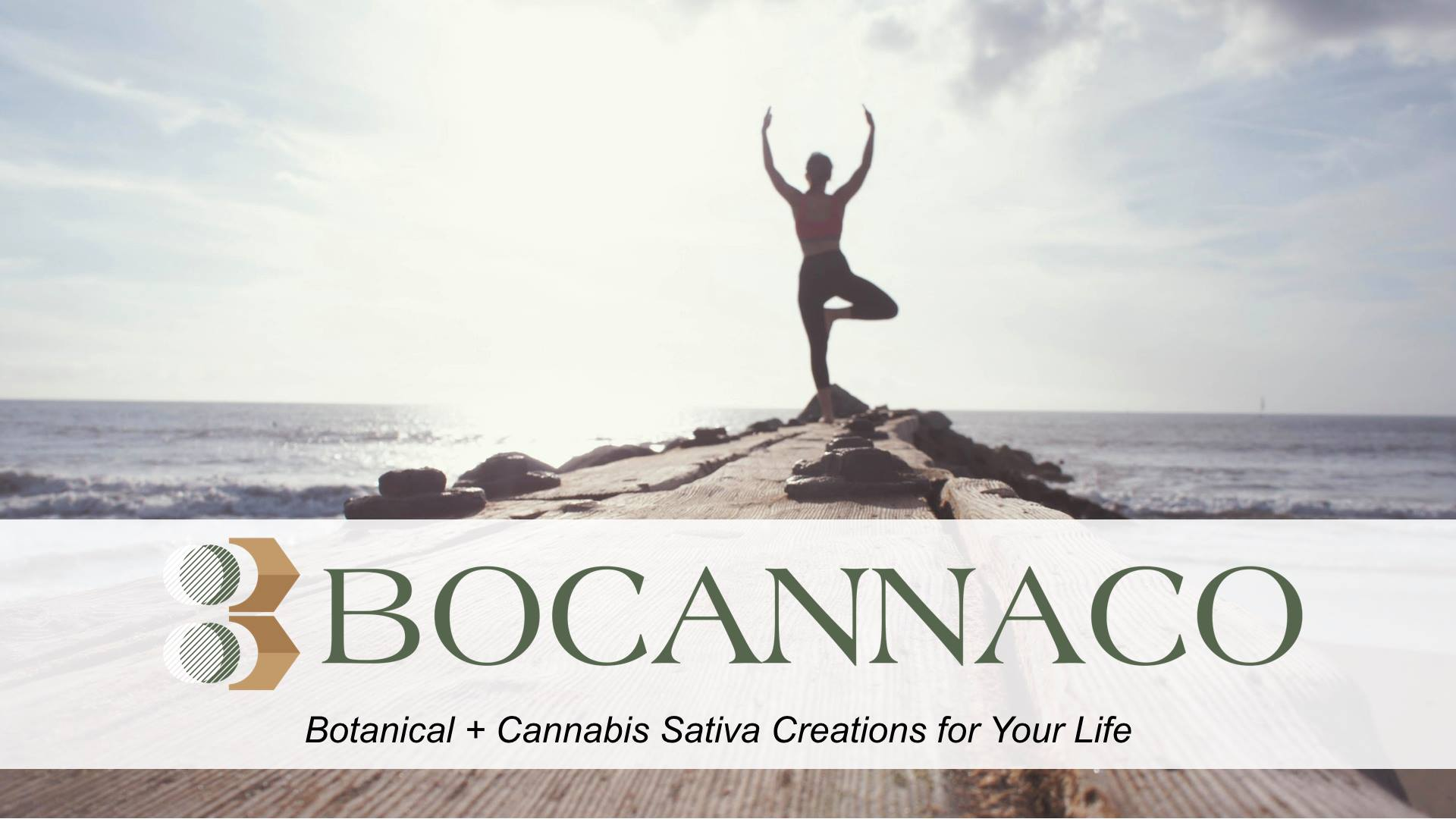Is Bocanacco a Scam - Landing Page