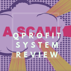 QProfit System Review Image Summary