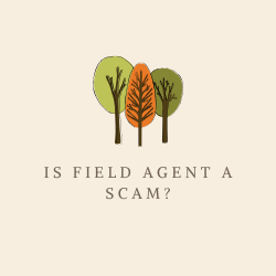 Is Field Agent a Scam Review Image Summary