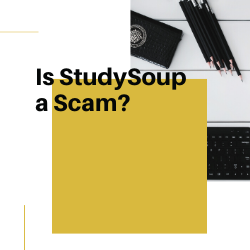Is StudySoup a Scam Image Summary