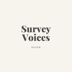 Survey Voices Review Image Summary