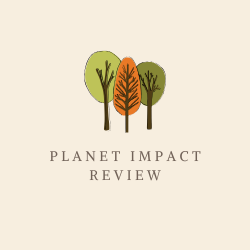 Planet Impact Review Image Summary