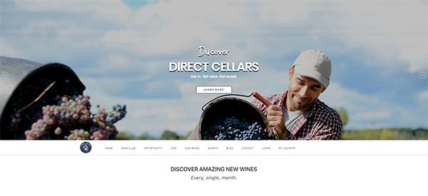 Direct Cellars Review - Landing Page