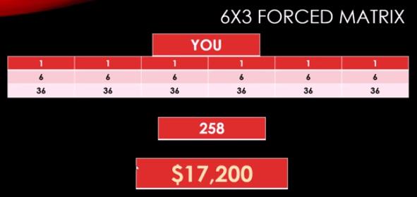 Is Crazy Cash Club a Scam - 6x3 Matrix
