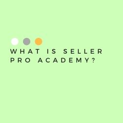 What Is Seller Pro Academy Image Summary