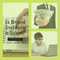 Is Brand Institute a Scam Image Summary