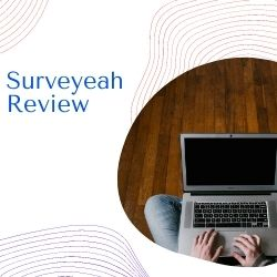What Is Surveyeah Image Summary