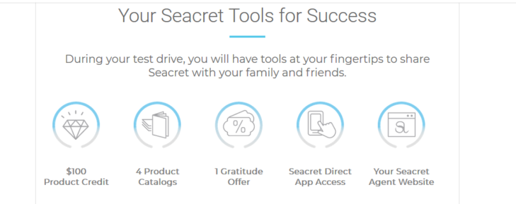 Is Seacret Direct a Scam - How To Get Started