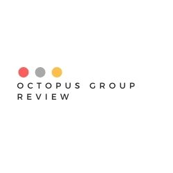 What Is Octopus Group Image Summary