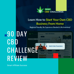 What Is 90 Day CBD Challenge Image Summary