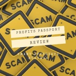 Profits Passport Review Image Summary